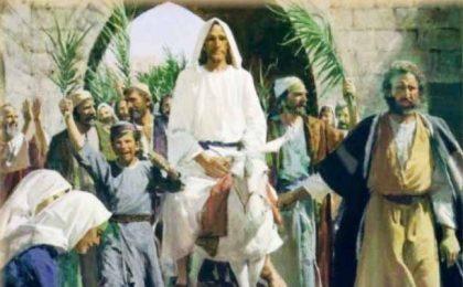 L'Ulivo benedetto nella Domenica delle Palme